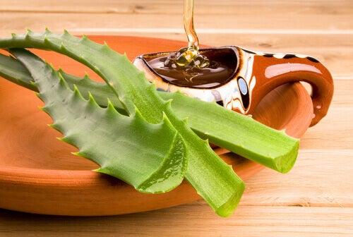 Aloe och honung
