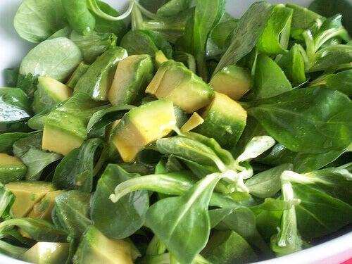 Avokado innehåller folsyra