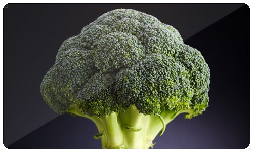 Broccoli mot cancer