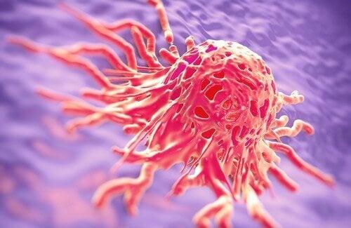 Medicinalväxter som används i kampen mot cancer