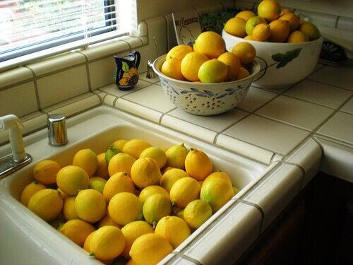 Citroner-4