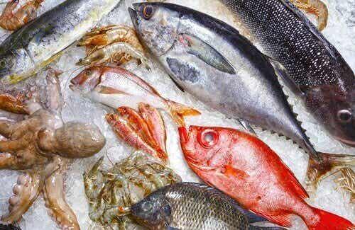 5 olika fiskar du borde undvika att äta