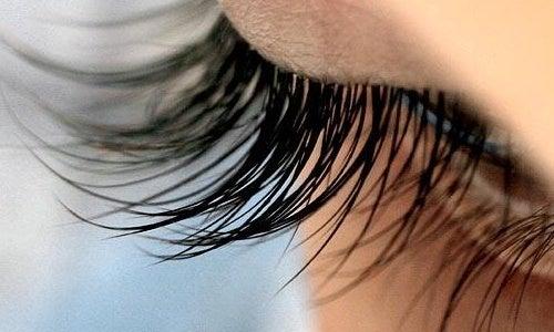 Huskurer för längre ögonfransar