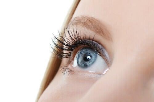 Få långa ögonfransar med dessa trick