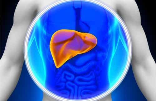 8 livsmedel som naturligt avgiftar din lever