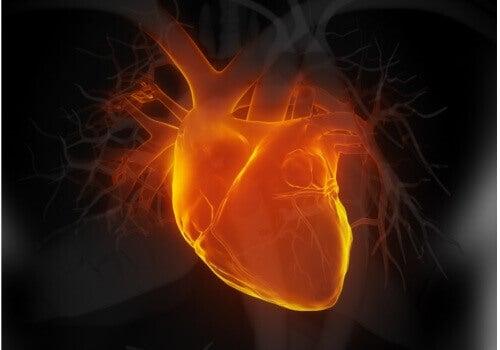 Kärlkramp kan även visa sig som bröstsmärta som uppstår då du tränar
