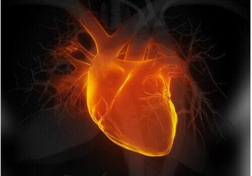 hjärtproblem