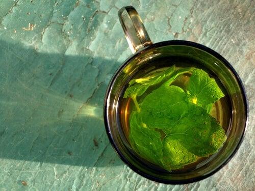 Rena njurarna med te