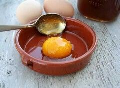 Ägg för Ett Snabbväxande och Starkt Hår