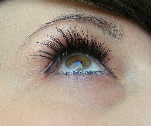 Träna ögonen en liten stund varje dag