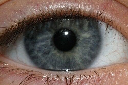 Din ögonfärg kan ge dig ledtrådar om din hälsa