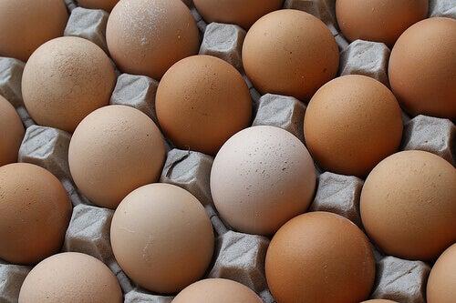 Äggskal är nyttigt