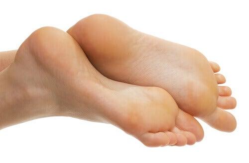 Friska fötter