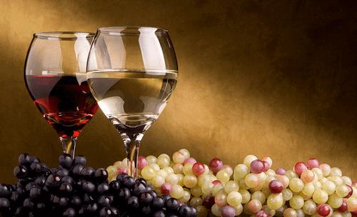 Vin och vindruvor