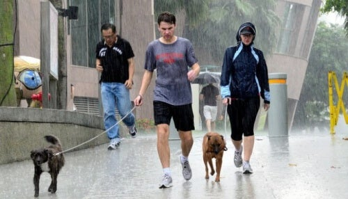 Walking-dog-in-rain-e1433886903503sve