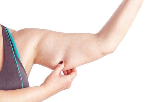 arm-flabsve
