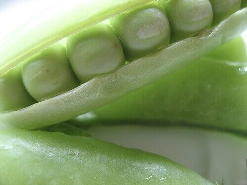 Baljväxter är mer lättsmälta än kött