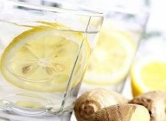 citron-ingefära-dryck