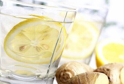Platt mage med lemonad på ingefära, gurka och mynta