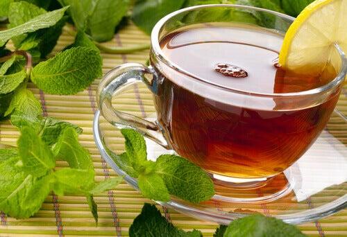 Medicinalväxter som botar dina tarmar