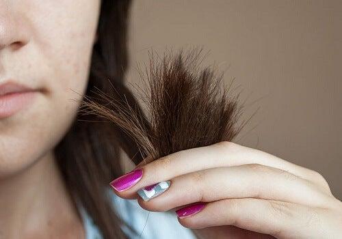 kluvna hårtoppar