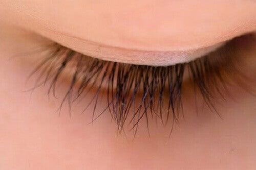Ögonfransar 2
