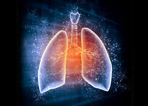 Gör en diet för att avgifta dina lungor