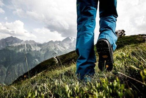 Att ta promenader hjälper bukspottskörteln