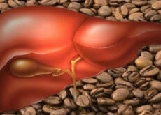 kaffe hjälper din lever