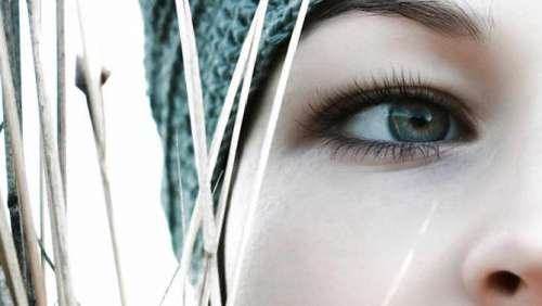 Ögonfransar