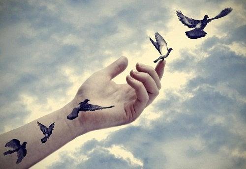 fåglar på handen