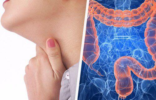 Halsproblem och tarmarna