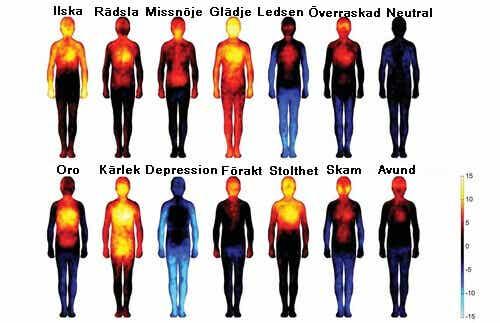 Negativa tankar och känslor skadar kroppen