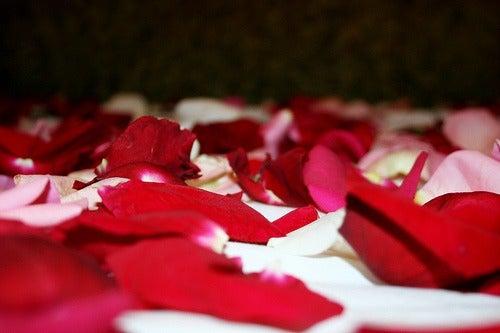 Kronblad på säng