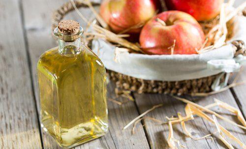 äppelcidervinäger i glasflaska