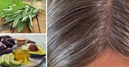 Grått hår: orsaker och naturliga huskurer