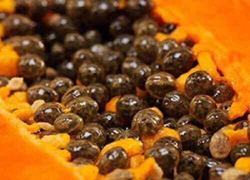 Upptäck 5 otroliga fördelar med papayafrön