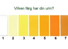Färg på urinen