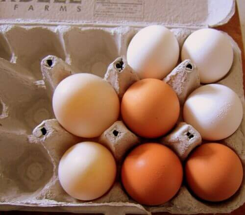 Hur många ägg är nyttigt?