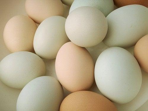 Välj ekologiska ägg