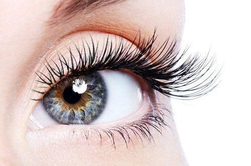 Naturliga sätt att få fylligare ögonfransar