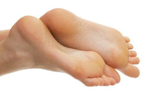 Sunda fötter