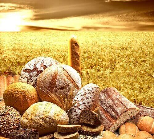 Bröd-spannmål