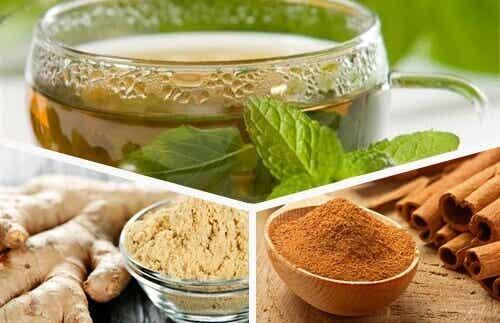 Förnya kroppen med avkok på grönt te, ingefära och kanel