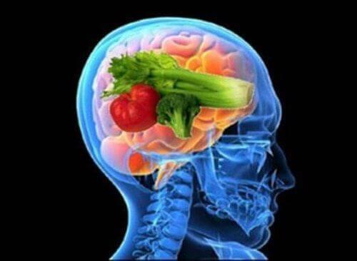 Upptäck fördelarna med hjärndieten