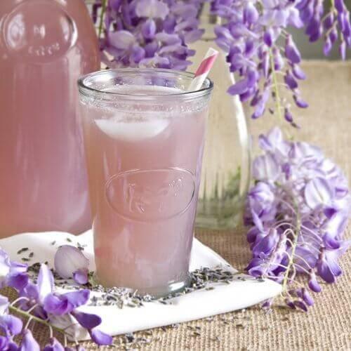 Lavendel och salvia