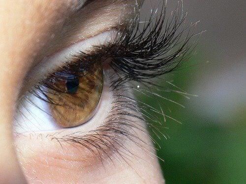 Tjocka ögonfransar