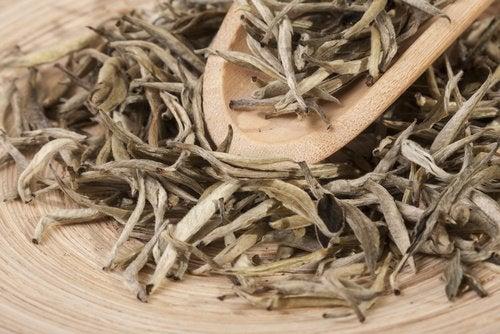 Vitt te för ökat magnesiumintag