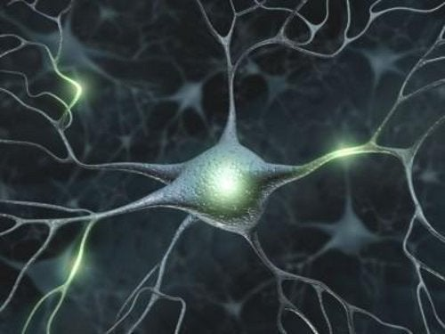 De 10 enklaste strategierna för att förbättra minnet
