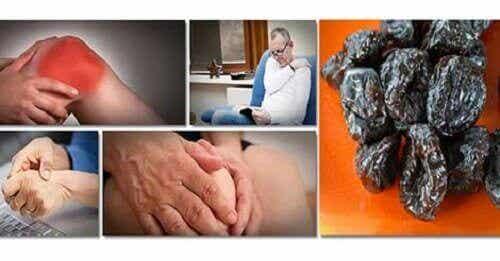 Katrinplommon kan förebygga förlust av benmassa